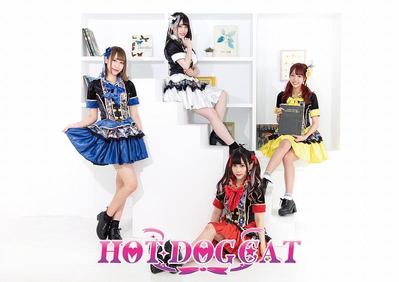 HOT DOG CAT、9月13日より配信限定シングル「ワンダフルライフ」の発売を急遽決定!!4人はこう歌いかけてきた、「甘くない日々にフルボッコされても 僕たちの悩みなど些細なこと」だと。